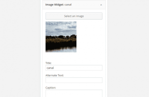 Cool wordpress widgets